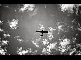 Planes by MRBee30