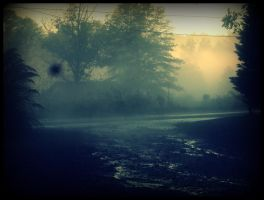 into the fog by x--photographygirl