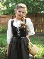 Tavern Wench Stock 7 by taylor-youth