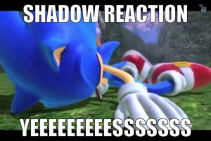 Sonic's Death / Shadow's Reaction by animorphs5678