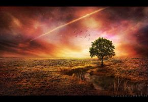 .follow you down to the red oak tree by masKade