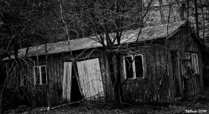 Run Down Shack by TebPixels
