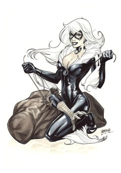 Black Cat and Spidey by manulupac