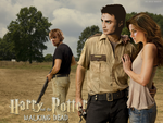 Harry Potter and the Walking dead by Maevezanar