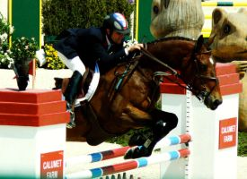 Rolex Stadium Jumping by oxclassxo