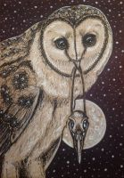 ACEO: Birds of Prey by DanielleMWilliams