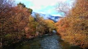 Carmel Valley River  by sethses1