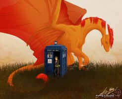The Doctor meets a dragon by tanglehymn