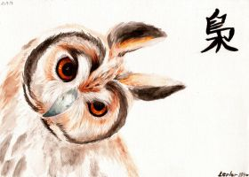 OWL by lepler