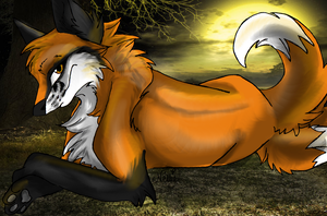 What a Sly Foxx.... - Gift by X-x-Magpie-x-X