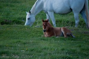 With Mom Watching Me by WinterLover29
