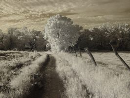 Infrared Scenes Stock Package by usedtoit03