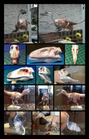 Sculpting Process of the Deinonychus model by nwfonseca