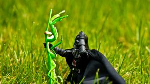 'Oh my! Earth insects are huge' - Darth Vader by ThanhDDanh