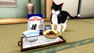 [MMD] Cat Food by MewMewKittyMewMew