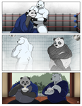 A day with Zian Panda by ShadowNinja976