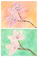 Cherry Blossom Watercolors by cutekick