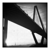 2015-013 Arthur Ravenel Jr. Bridge by pearwood