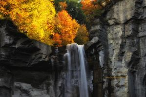 NY's Taughannock falls VII by pjs15204