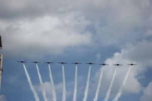 Canadian Snowbirds by BackMasker