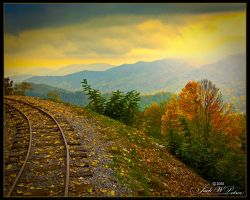 Tracks by JackPetree
