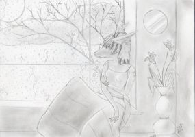 wish you were here .:TRADITIONAL:. by lucidcoyote