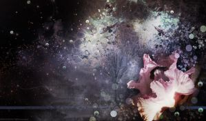 Birds Premade Background by VaLeNtInE-DeViAnT