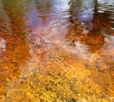 Reflexion in amber water by Spectrum-M