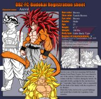 Budokai Registration sheet- Arevir by JayDRivera