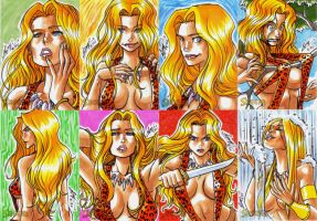 Sheena cards 2 by eisu