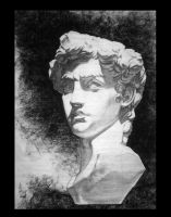 sculptural study of David by bolognafingers