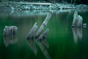 Wisla_3 by papagall