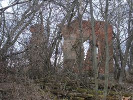 The abandoned house in the trees pic 1. by RaikanEarthDragon