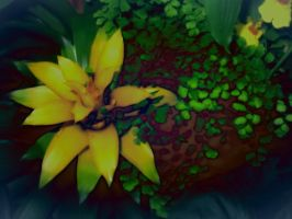 Yellow Green with filters by Ommadawn