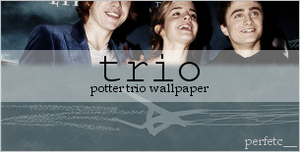 Potter Trio Wallpaper by perfetc