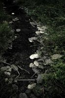 Muros: Path by ice-works