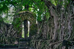 Secret  Place by CitizenFresh
