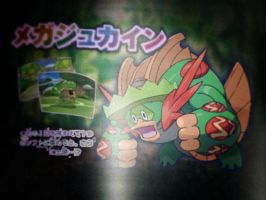 Mega ludicolo fake scan by Tentalones
