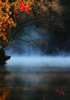Autumn Pond by tidesend