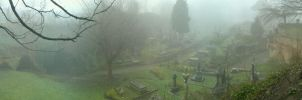 Foggy in the cemetery 16 by rudeturk