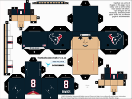 Matt Schaub Texans Cubee by etchings13