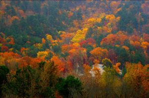 01- The Rite of Fall by JoeCorreia
