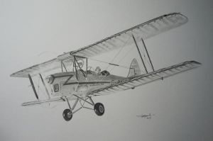 DeHavilland Tiger Moth Aviation Art by NorthumbriaArt