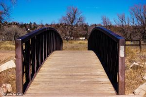 Conventional Bridge by dlockett17