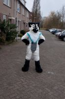 TranceCat by FurryFursuitMaker