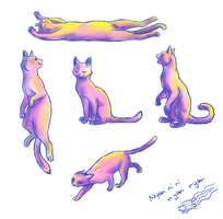 cat sketchesss again by BakaMichi