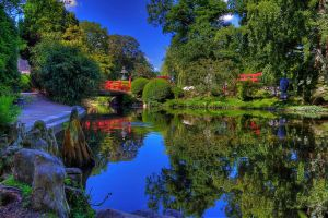 Pond in the park by chevyhax