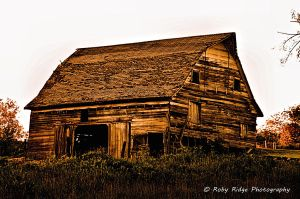 Neglected by RobyRidge
