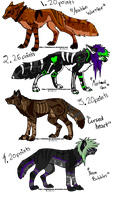 Scene dog adoptables 7 by DrappingMalice