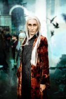 Thranduil The Elvenking by Matsue-Faust